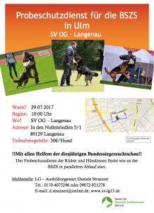 Trainingstag mit allen Lehrhelfern der BSZS am 29.07.2017 in der OG Langenau