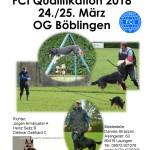 LG-FCI - OG Böblingen am 24./25.03.2018
