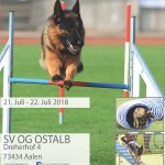 LG-Agility bei der OG Ostalb, Sitz Aalen am 21./22.07.2018