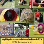 LG-Agilitymeisterschaft 2019 bei der OG Bernhausen