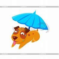 Sonnenschutz für die startenden Hunde in der Ablage bei der LGA