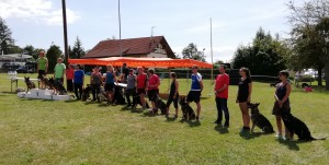 Unser Team Agility 2019 bei der BSP in Halle