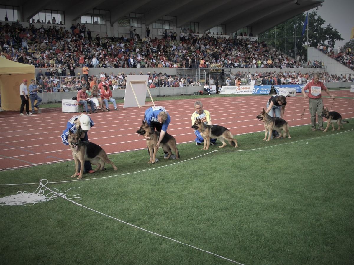 Die BSZ 2005 in Ulm: Eines von vielen Ereignissen, das die LG in den vergangenen Jahren geprägt hat.